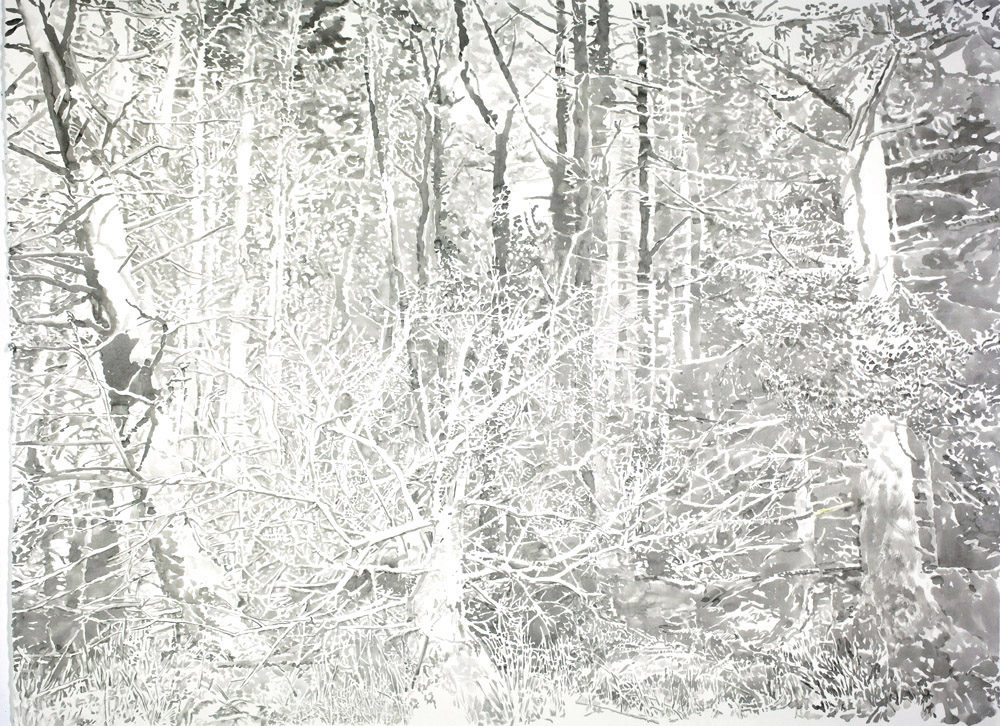 Emily Brown, Woods, 2016, Ink on paper, 38 x 52 inches