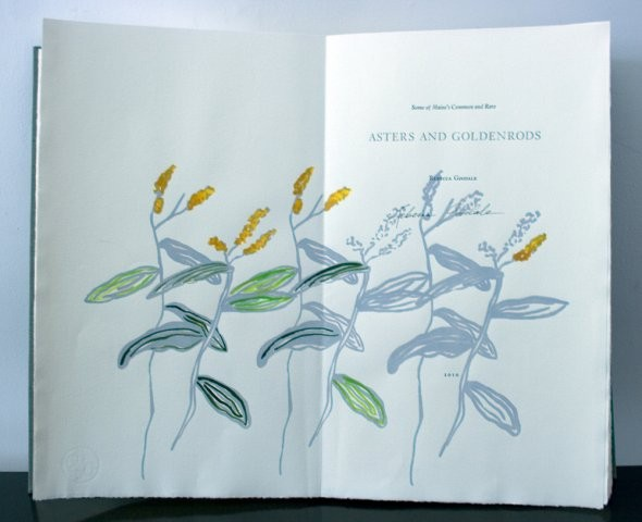 """Asters & Goldenrods,"" by Rebecca Goodale"