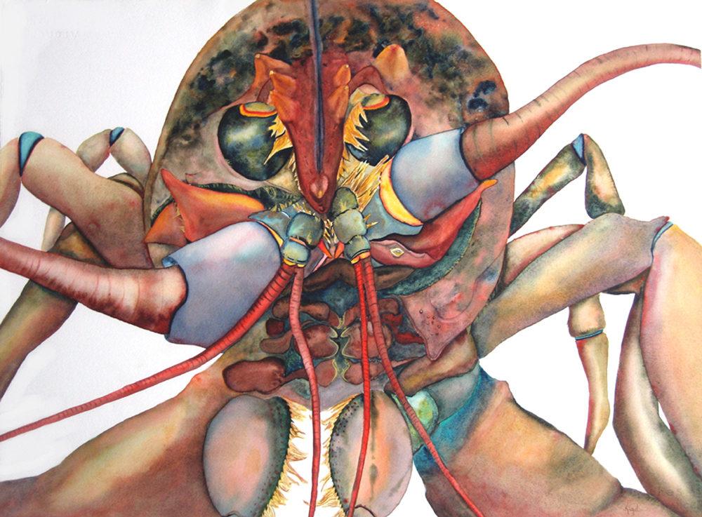 """Jean Kigel, """"Battle Line,"""" 2011, watercolor, 33x40"""""""