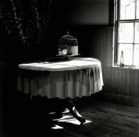 "Jon Edwards, ""Empty Cage,"" 2011, selenium-toned silver gelatin print, 12"" x 12"""