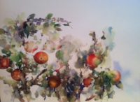 Deborah Ellis, Apples
