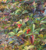 "Marjorie Glick, Forest Jewels, 2013, Watercolor, 25""x25"""