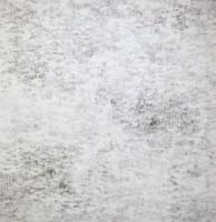"""Gabriella D'Italia, """"Hog Hill,"""" 48 x 48,"""" graphite on board, 2013"""