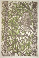 """River Birch with Barred Owl - AP,"" by Anne Kilham"
