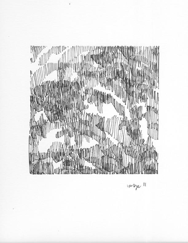 "Gabriella D'Italia, ""Hair,"" 8.5 x 11,"" ink on paper, 2014"