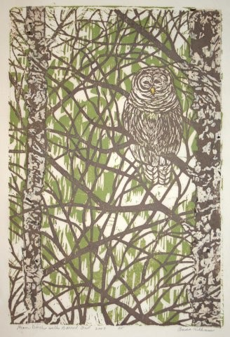 """""""River Birch with Barred Owl - AP,"""" by Anne Kilham"""