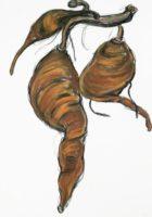 "Lori Schafer, Sweet Potato Cluster, 1998, mixed media on paper, 41 x 29"""