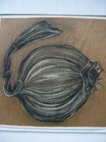 "Lori Schafer, Giant Onion, 1997, mixed media on paper, 34 x 35.5"""