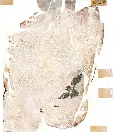 004-RLeax-Natural_history_georgetown_13x10-2014