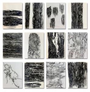 "Jeff Woodbury, ""beetlerunes group of 12,"" 2013, gravestone rubbing wax on paper, 12 x 9 in. each"