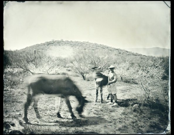 Expeditionary_Frenchman_with_Donkeys_8x10