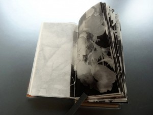 """Anne-Claude Cotty, """"Flowers Open Endlessly Into,"""" artist book: brass, copper, wire, Plexiglas, photograms toned with mordancage, Coptic binding, text from Rilke's """"Duino Elegies,"""" 5.5 x 3 x 1.5 in."""