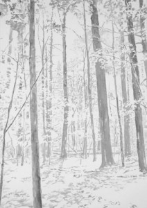 """Emily Brown, """"Woods, morning,"""" 2013, ink on paper, 52.75 x 36.75 in."""