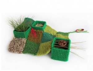 """Leah Gauthier, """"Some bring gifts, 2456733.020833,"""" 2014, live grass, foraged grass, lentils, wool yarn, embroidery thread, needlepoint mesh, foraged acorn shell, lady bugs, rocks, 8 in. x variable in."""